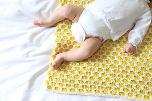 bee-blanket 2