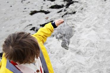 Kind in gelber Regenjacke von Petit Bateau hält toten Fisch am Strand in Binz auf Rügen