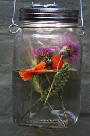 sonnenglas-blumen-vase